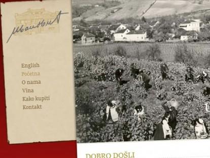 slika-Ivanovic-vino---zavrsen-projekat-152_800