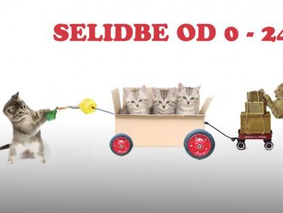selidbe-1